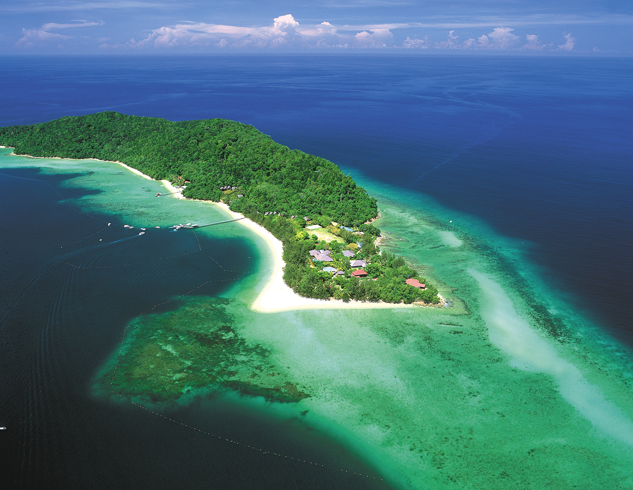 A Picture Of Alvin S Island