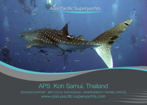 Download our Koh Samui Brochure 2015
